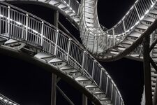 Tiger and Turtle (AK)