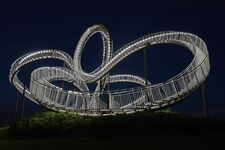 Tiger and Turtle (SG)